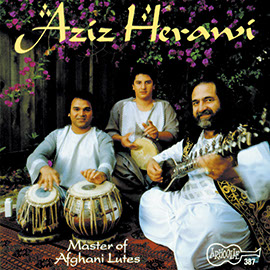Master of Afghani Lutes