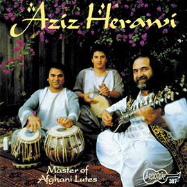 Master of Afghani Lutes