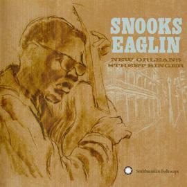 New Orleans Street Singer