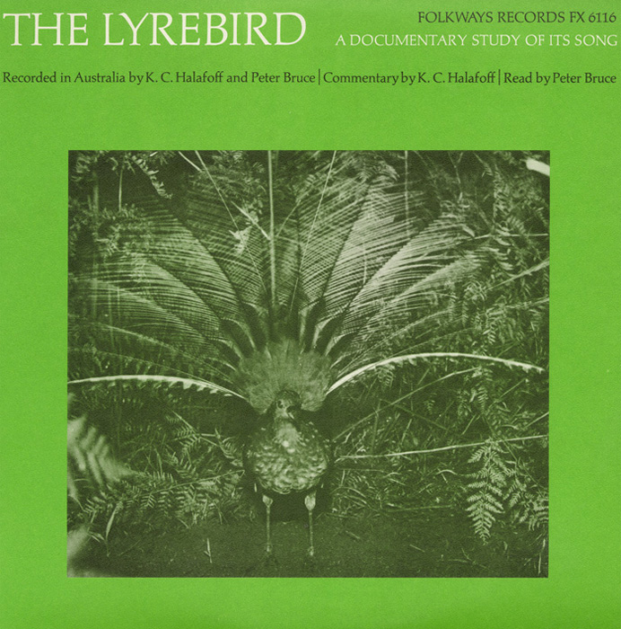 The Lyrebird: A Documentary Study of Its Song