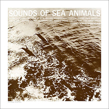Cover Art Print - Sounds of Sea Animals