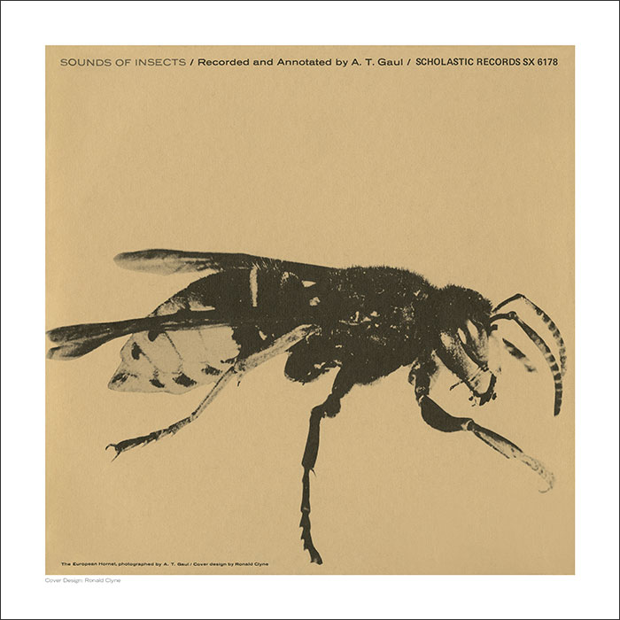 Cover Art Print - Sounds of Insects